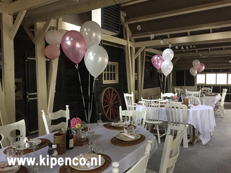 huwelijke feest landgoed vrouwenpolder