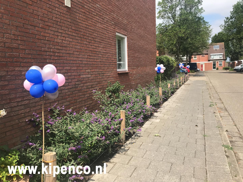 ballon tuin feest